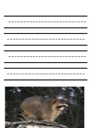 Homeschool Helper Online's Free Raccoon Notebooking